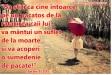 vintage,fashion,summer,girl,umbrella,unbrella-e0461789b9b78d3c197f3da19259fe4b_h_large